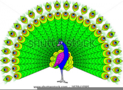 Dancing Peacock Clipart   Free Images at Clker.com - vector ...