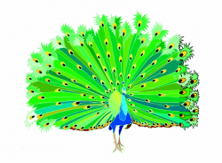 Dancing Peacock Clipart Free PNG Images & Clipart Download ...