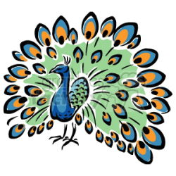 Colorful peacock clipart. Royalty-free clipart # 129467