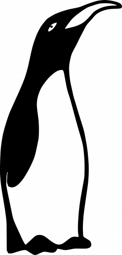 Clipart - Smug Penguin