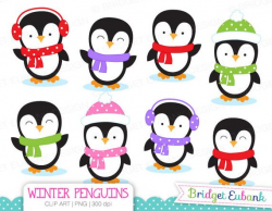 Penguin Clipart, Penguins Clipart, Winter clipart, Christmas clipart, 8  High Quality PNG Images, Instant Download