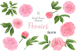 Wedding floral clip art, peonies clipart, hand drawn summer pink ...