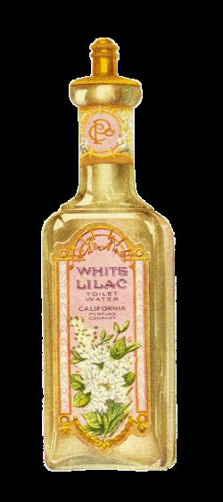 Antique Images: Vintage Avon Beauty Clip Art Perfume Bottle Image ...