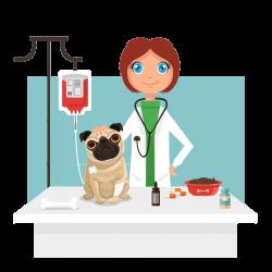 Dog Veterinarian Clip art - Cartoon pet dog and pet doctor 1024*1024 ...