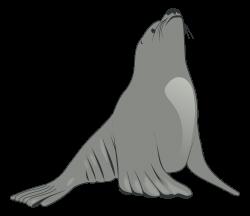 Clipart - Sea Lion