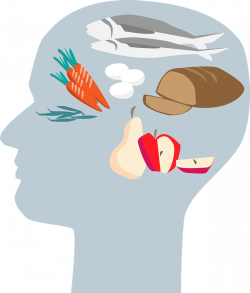 Collection of 14 free Demeanure clipart head brain. Download on ubiSafe