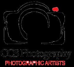 Wedding Photographer - St. Petersburg, FL - CCS Photography