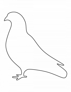 Pigeon pattern. Use the printable outline for crafts, creating sten ...