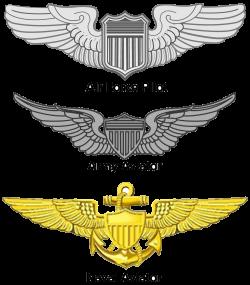 United States Aviator Badge | Military Wiki | FANDOM powered by Wikia