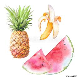 Watercolor exotic fruit set. Hand drawn banana, pineapple ...