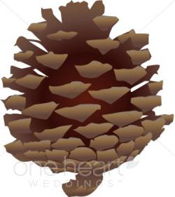 Pinecone Clip Art | Winter Wedding Clipart