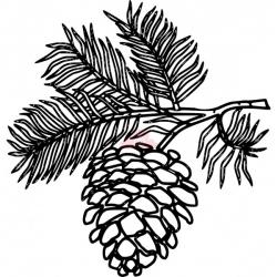 White Pine Cone Drawing Clip art pine cone clipart panda - free ...