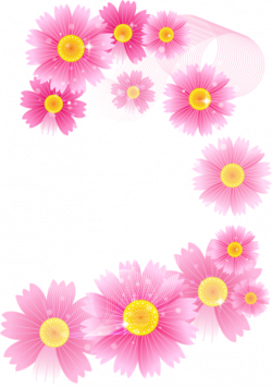 Res] Pink Flowers PNG by HanaBell1 on DeviantArt