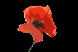 ftestickers art watercolor flower poppy...