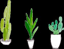 plants tumblr - Sticker by Ani Garcia!