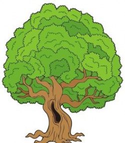 39 Best CLIPART - PLANTS, TREES, ETC images | Tree clipart ...