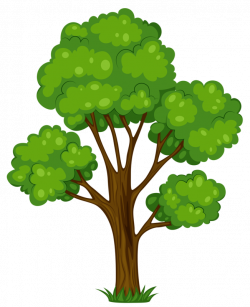 Painted_Green_Tree_PNG_Clipart_Picture.png   Pinterest   Clip art ...