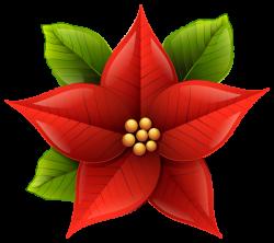 Christmas Poinsettia PNG Clip-Art Image | karácsony, angyalok ...