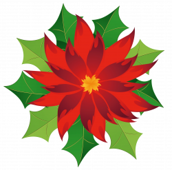 Christmas Poinsettia Clipart | Gallery Yopriceville - High-Quality ...
