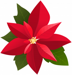 Christmas Poinsettia PNG Clip Art | Gallery Yopriceville - High ...