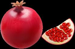 Pomegranate Transparent Clip Art Image | Gallery Yopriceville ...