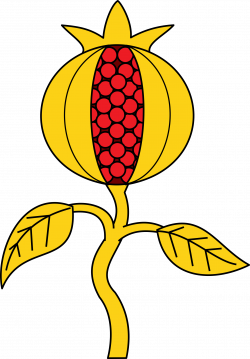 Clipart - Pomegranate