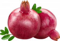 pomegranate png - Free PNG Images | TOPpng