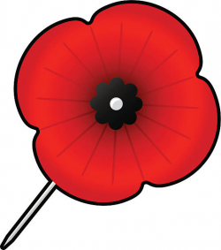28+ Collection of Remembrance Poppy Clipart | High quality, free ...