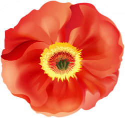 Poppy PNG Clip Art Image | Gallery Yopriceville - High-Quality ...