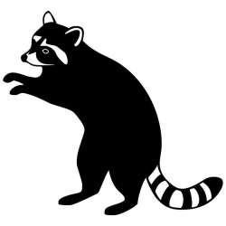 Racoon Clipart | Free download best Racoon Clipart on ...