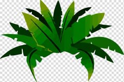 Green plant , Jungle Tropical rainforest Amazon rainforest ...