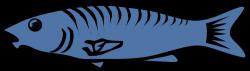 salmon-fish-clip-art-salmon-clipart-liftarn_Blue_fish | North Park ...