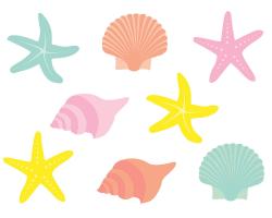 102+ Seashells Clipart | ClipartLook