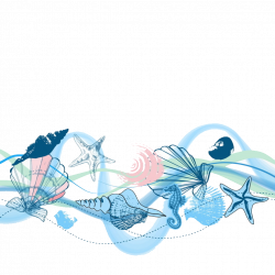 Seashell Icon - conch 1024*1024 transprent Png Free Download - Blue ...