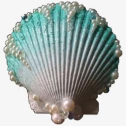 Shell Clam Blue Ocean Nichememe Aesthetic Freetoedit - Aqua ...
