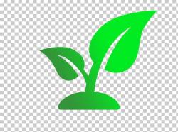 Leaf Seedling Champaign-Urbana Community Fab Lab Plant Stem ...