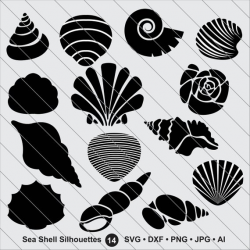 Sea Shell Silhouettes SVG,shell clipart, bundle svg, shell ...