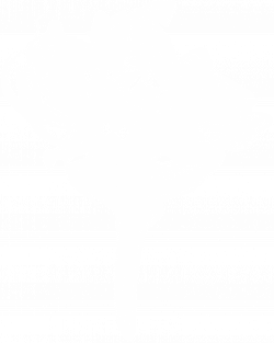 10 White Smoke (PNG Transparent)   OnlyGFX.com