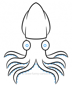 How to draw a squid clipart