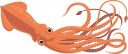 Unique Squid Clipart Collection - Digital Clipart Collection
