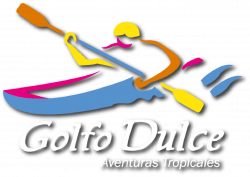 Sunset and Dolphins Kayak Tour - Aventuras Tropicales Golfo ...