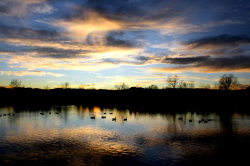 Sunset Over the Lake Picture | Free Photograph | Photos ...