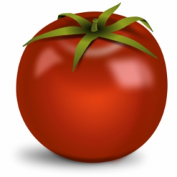 Tomato Png - Red Tomato Clip Art - tomato png, Free PNG ...