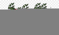 Tomato Clipart Tomato Stem - Tomato Plant Clip Art - Png ...
