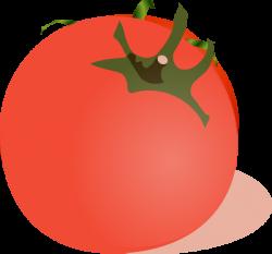 Tomato Clip Art at Clker.com - vector clip art online, royalty free ...