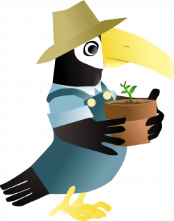 Toucan in the garden Icons PNG - Free PNG and Icons Downloads