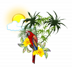 Scarlet macaw Parrot Bird DeviantArt - tropical 6000*5564 transprent ...