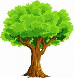 Image result for tree Clipart | эскизы для книжечек | Pinterest ...
