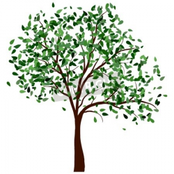 Summer tree with green leaves.illustration. | Murals in 2019 ...
