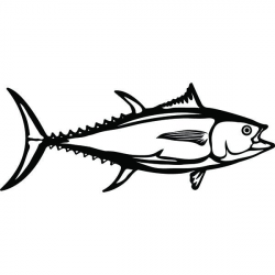 Tuna Drawing | Free download best Tuna Drawing on ClipArtMag.com